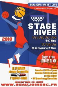 Flat-Basketball-Poster